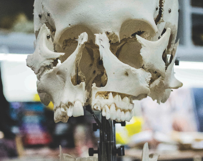 Forenzná stomatológia: úloha zubov pri určovaní  identity človeka